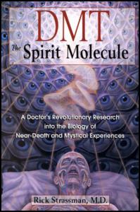 Dmt-The Spirit Molecule